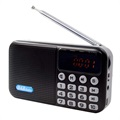 Portable Bluetooth DAB Radio with LCD Display