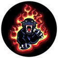 PopSockets Expanding Stand & Grip - Panther Flames